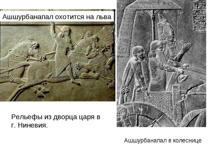 Ашшурбанапал охотится на льва Ашшурбанапал в колеснице Рельефы из дворца царя...