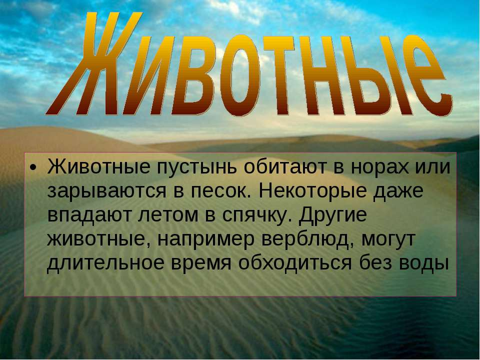 Животные пустынь обитают в норах или зарываются в песок. Некоторые даже впада...