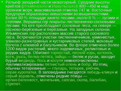 Рельеф западной части низкогорный. Средние высоты хребтов (Ильменского и Ишку...