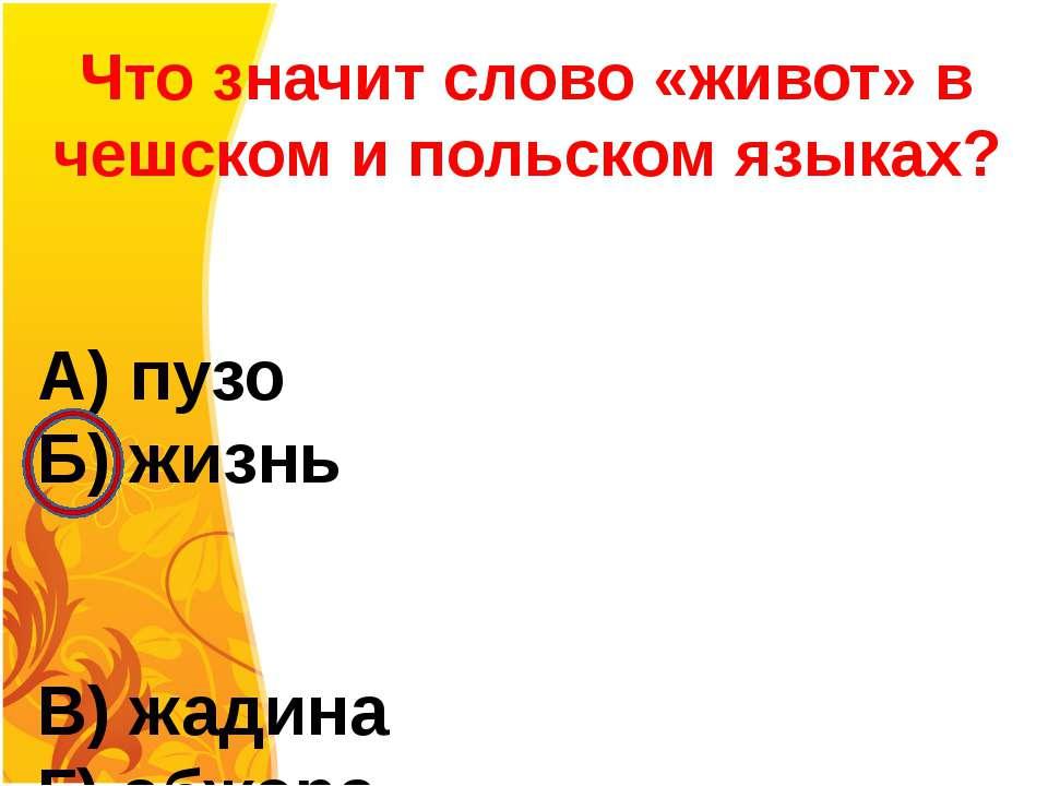 Что значит слово «живот» в чешском и польском языках? А) пузо Б) жизнь В) жад...