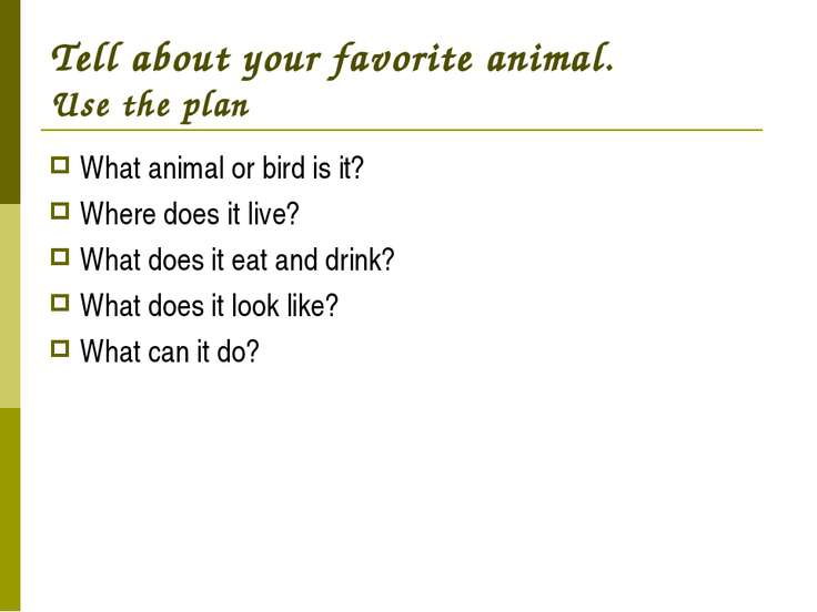 Tell about your favorite animal. Use the plan What animal or bird is it? Wher...
