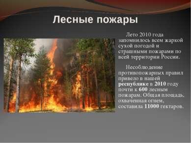 Лето 2010 года запомнилось всем жаркой сухой погодой и страшными пожарами по ...