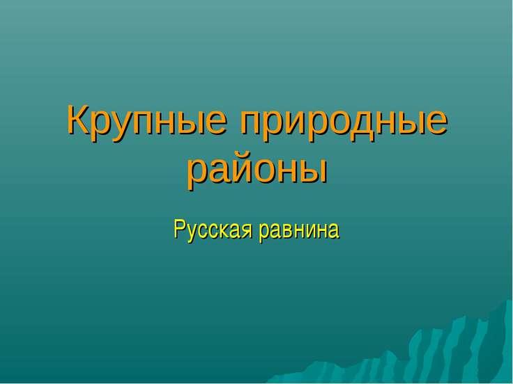 Крупные природные районы Русская равнина