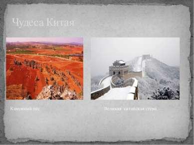 Чудеса Китая Каменный пёс Великая китайская стена