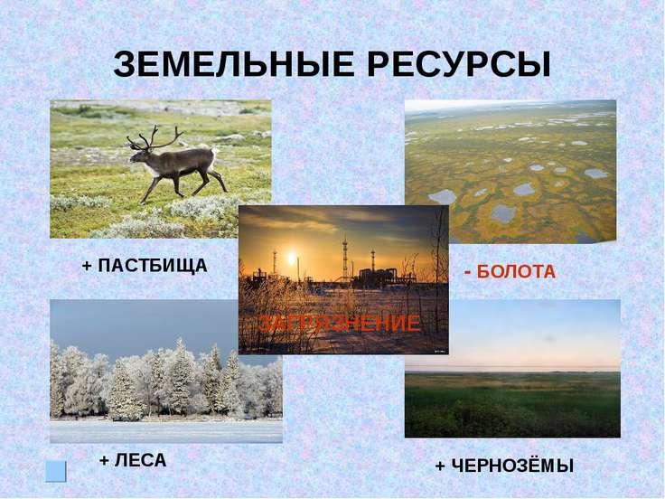 ЗЕМЕЛЬНЫЕ РЕСУРСЫ + ПАСТБИЩА - БОЛОТА + ЛЕСА + ЧЕРНОЗЁМЫ ЗАГРЯЗНЕНИЕ
