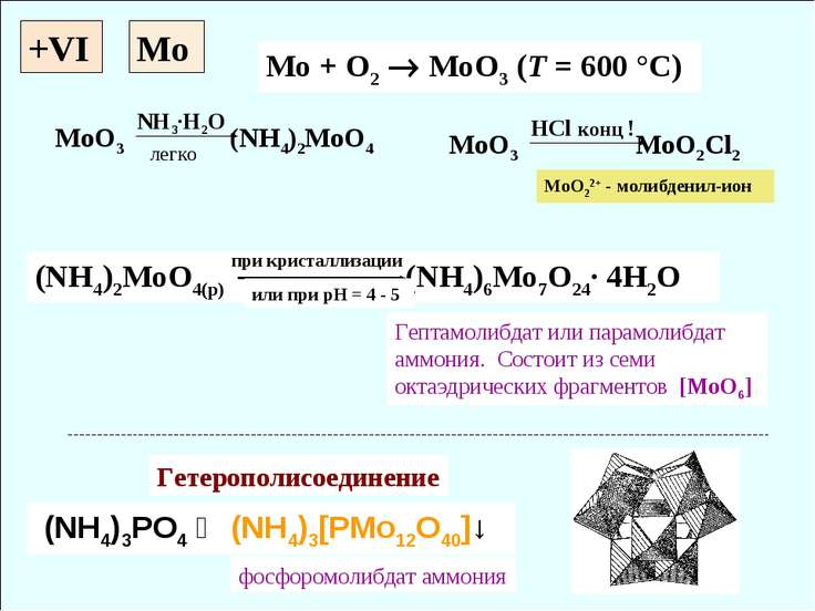 +VI Mo + O2 MoO3 (T = 600 °C) (NH4)2MoO4(p) (NH4)6Mo7O24· 4H2O (NH4)3PO4 ↝ (N...