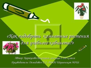 «Как подобрать комнатные растения для учебного кабинета?» Автор: Карагусова В...