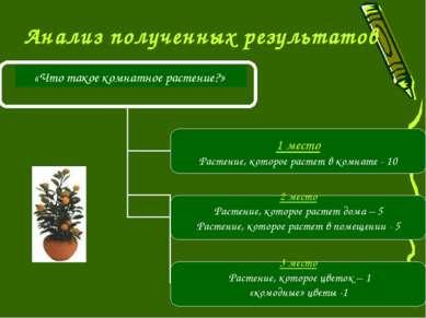 Анализ полученных результатов «Что такое комнатное растение?»