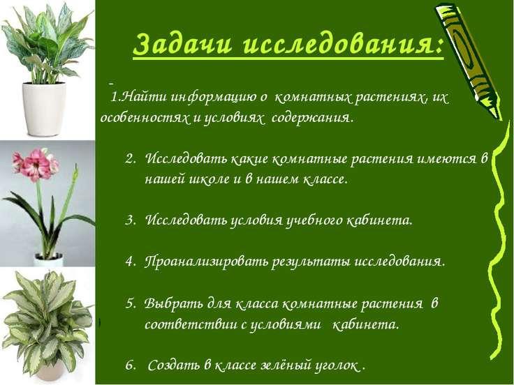 Найти информацию о комнатных растениях, их особенностях и условиях содержания...