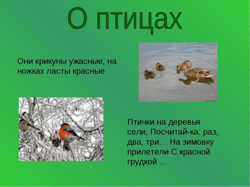 Они крикуны ужасные, на ножках ласты красные Птички на деревья сели, Посчитай...
