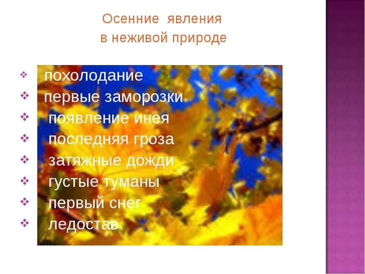 Осенние явления в неживой природе: похолодание первые заморозки появление ине...