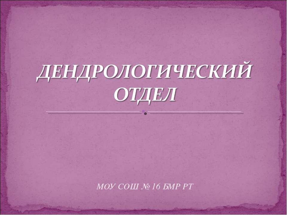 МОУ СОШ № 16 БМР РТ