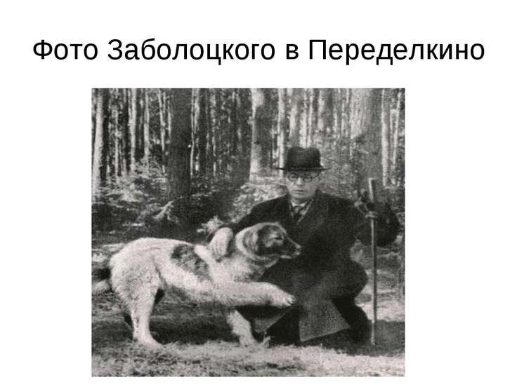 Фото Заболоцкого в Переделкино