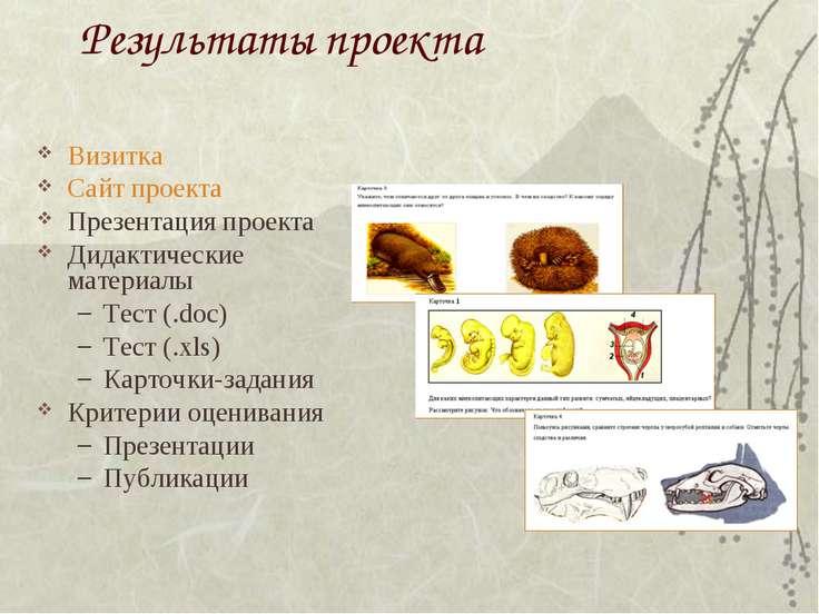Результаты проекта Визитка Сайт проекта Презентация проекта Дидактические мат...