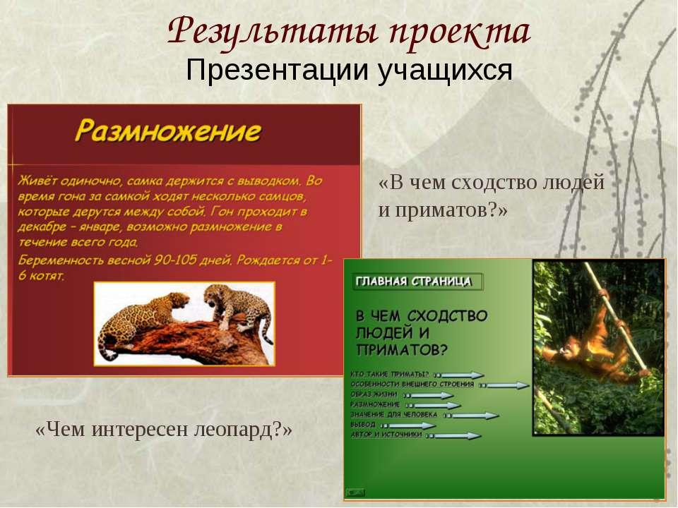 Результаты проекта Презентации учащихся «Чем интересен леопард?» «В чем сходс...