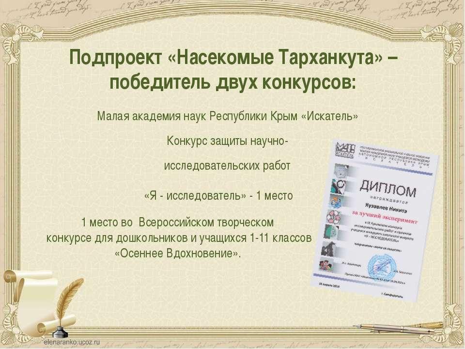 Подпроект «Насекомые Тарханкута» – победитель двух конкурсов: Малая академия ...