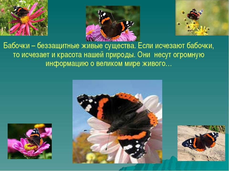 Бабочки – беззащитные живые существа. Если исчезают бабочки, то исчезает и кр...