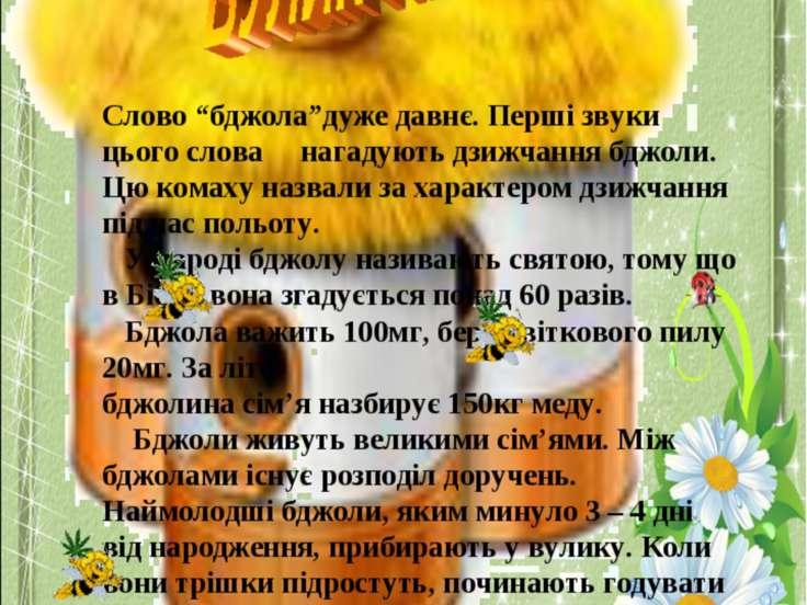 """Слово """"бджола""""дуже давнє. Перші звуки цього слова нагадують дзижчання бджоли...."""