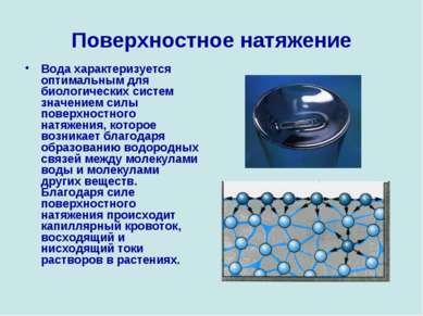Поверхностное натяжение Вода характеризуется оптимальным для биологических си...