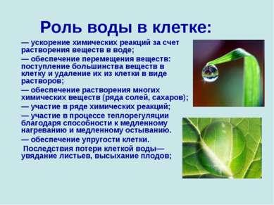 Роль воды в клетке: — ускорение химических реакций за счет растворения вещест...