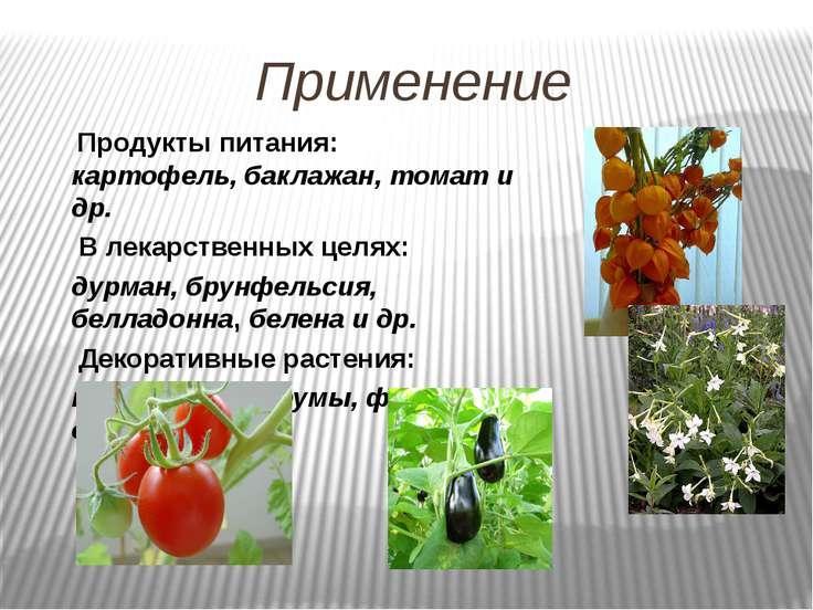 Применение Продукты питания: картофель, баклажан, томат и др. В лекарственных...