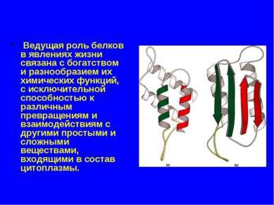 Ведущая роль белков в явлениях жизни связана с богатством и разнообразием их ...