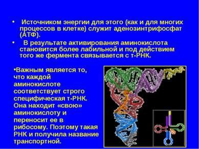 Источником энергии для этого (как и для многих процессов в клетке) служит аде...