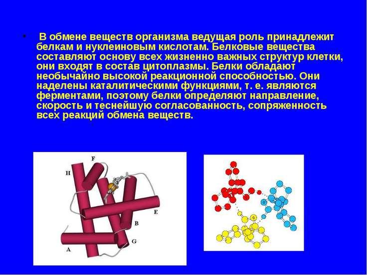 В обмене веществ организма ведущая роль принадлежит белкам и нуклеиновым кисл...