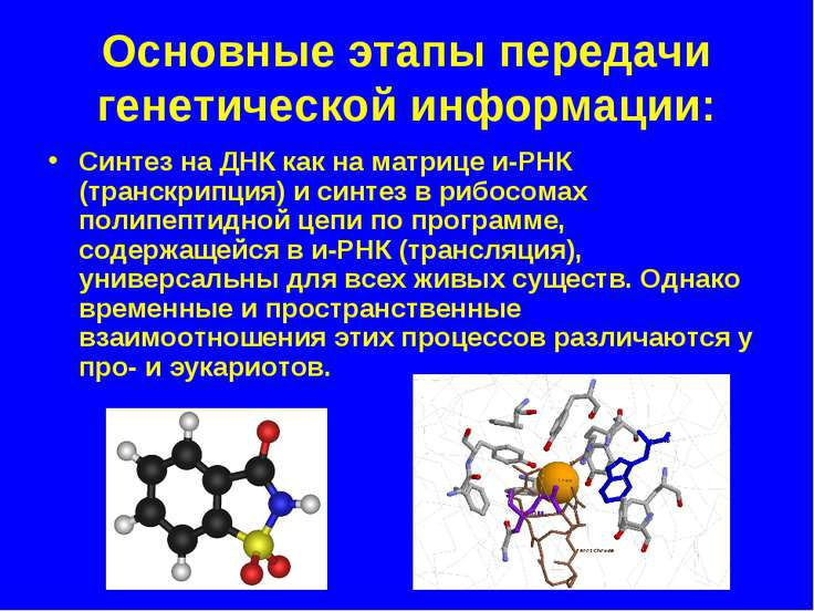 Основные этапы передачи генетической информации: Синтез на ДНК как на матрице...
