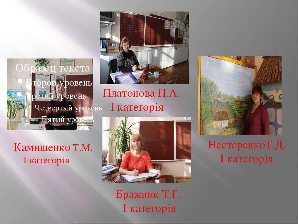 Платонова Н.А. І категорія Камишенко Т.М. І категорія НестеренкоТ.Д. І катего...