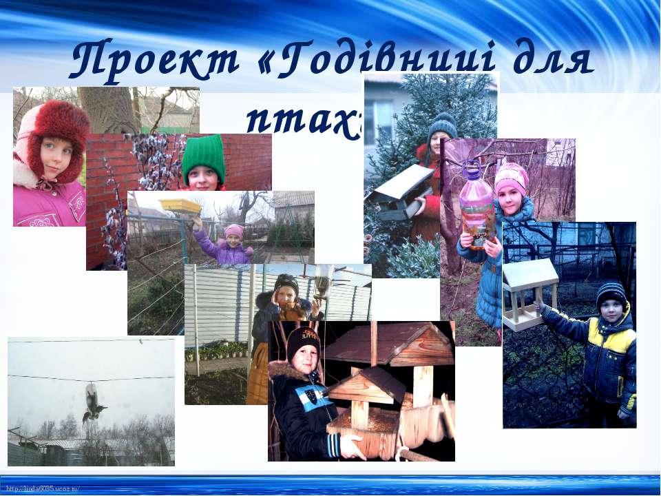 Проект «Годівниці для птахів» http://linda6035.ucoz.ru/