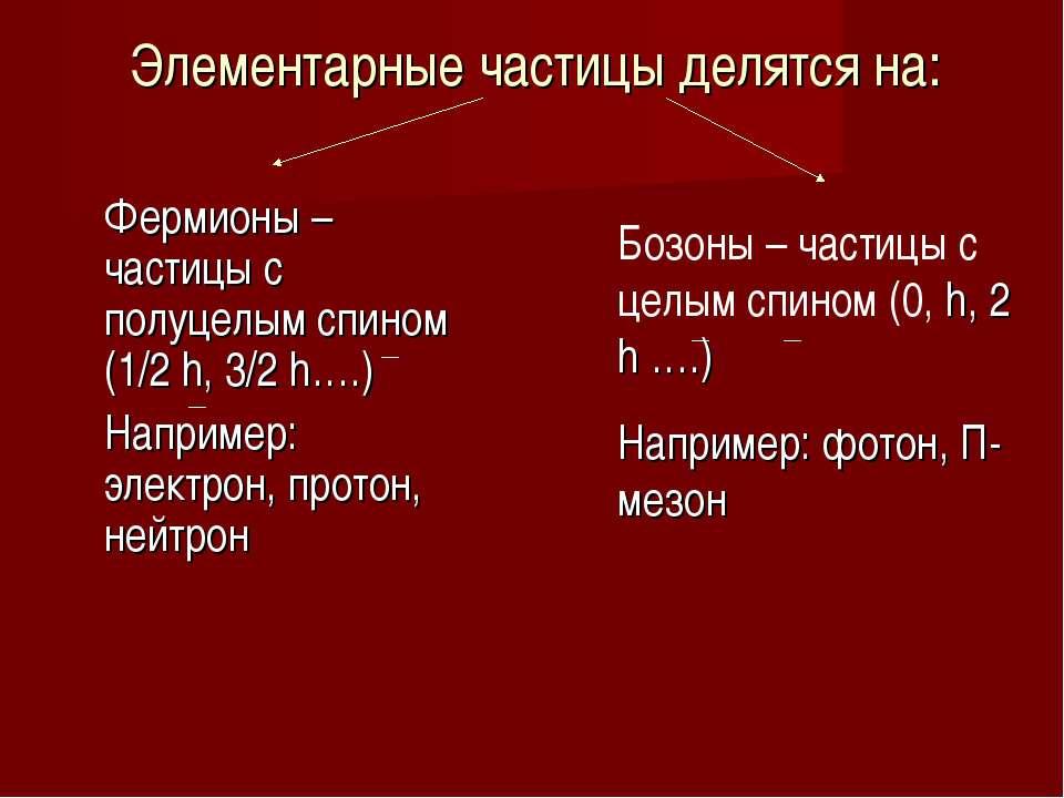 Элементарные частицы делятся на: Фермионы – частицы с полуцелым спином (1/2 h...