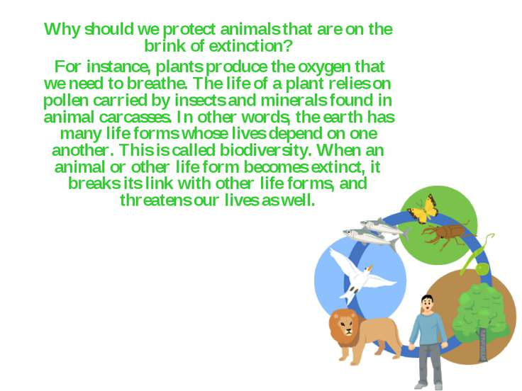 Why should we protect animals that are on the brink of extinction? For instan...