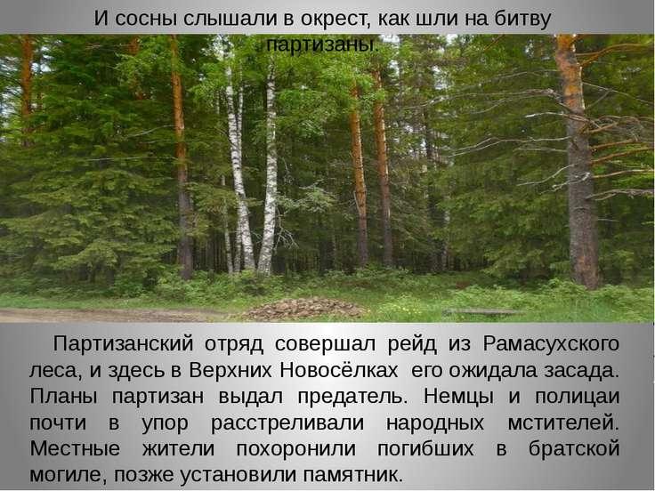 Партизанский отряд совершал рейд из Рамасухского леса, и здесь в Верхних Ново...