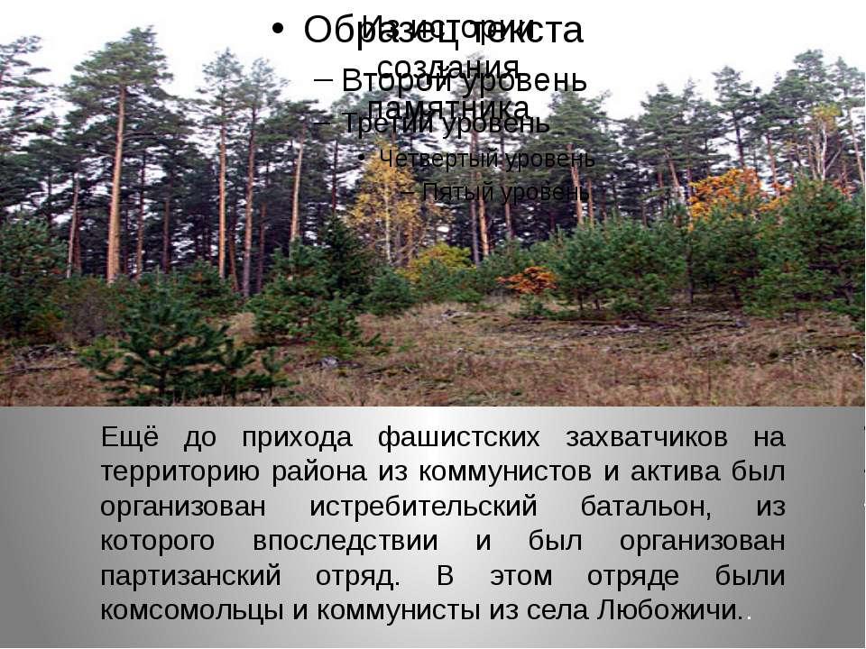 Из истории создания памятника Ещё до прихода фашистских захватчиков на террит...