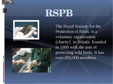 The Royal Society for the Protection of Birds is a voluntary organization (ch...