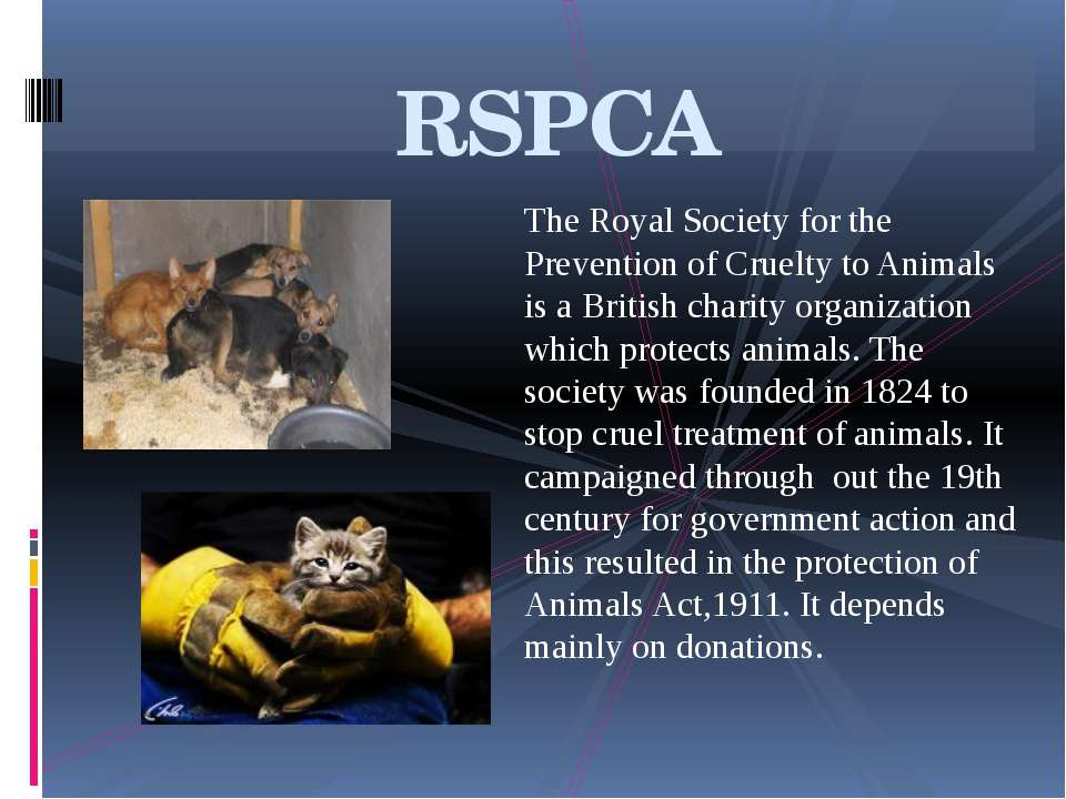 The Royal Society for the Prevention of Cruelty to Animals is a British chari...