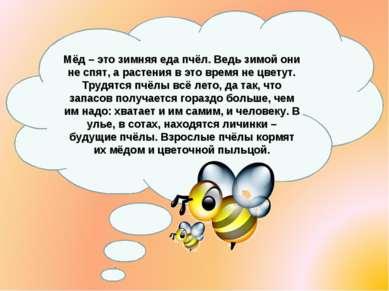 Мёд – это зимняя еда пчёл. Ведь зимой они не спят, а растения в это время не ...