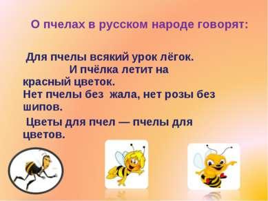 О пчелах в русском народе говорят: Для пчелы всякий урок лёгок. И пчёлка лети...