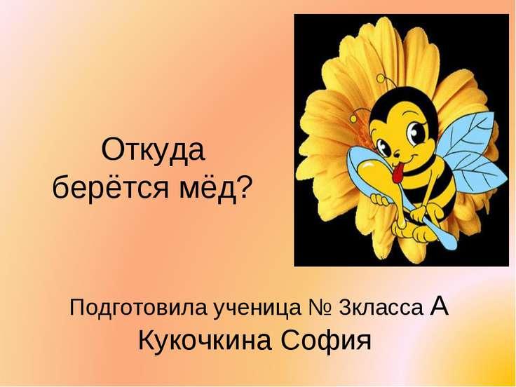Откуда берётся мёд? Подготовила ученица № 3класса А Кукочкина София