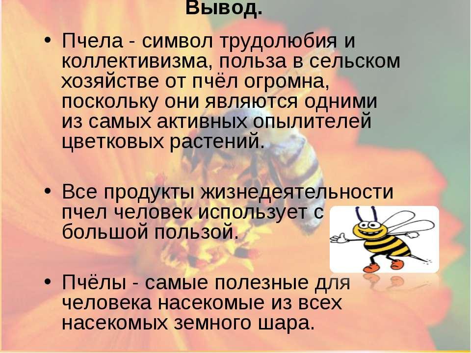 Вывод. Пчела - символ трудолюбия и коллективизма, польза в сельском хозяйстве...