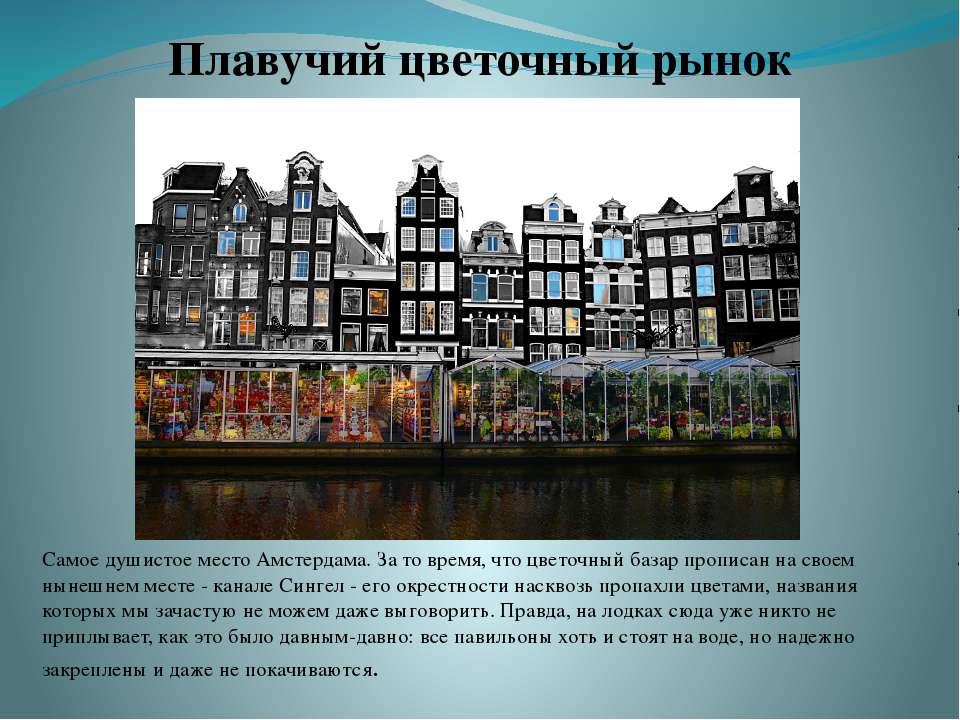 Самое душистое место Амстердама. За то время, что цветочный базар прописан на...