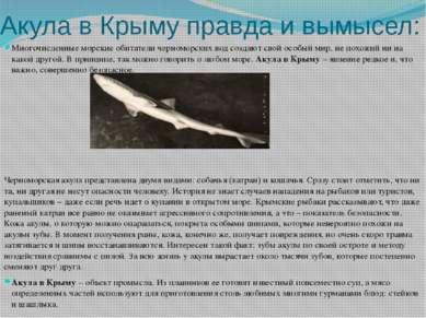 Акула в Крыму правда и вымысел: Многочисленные морские обитатели черноморских...