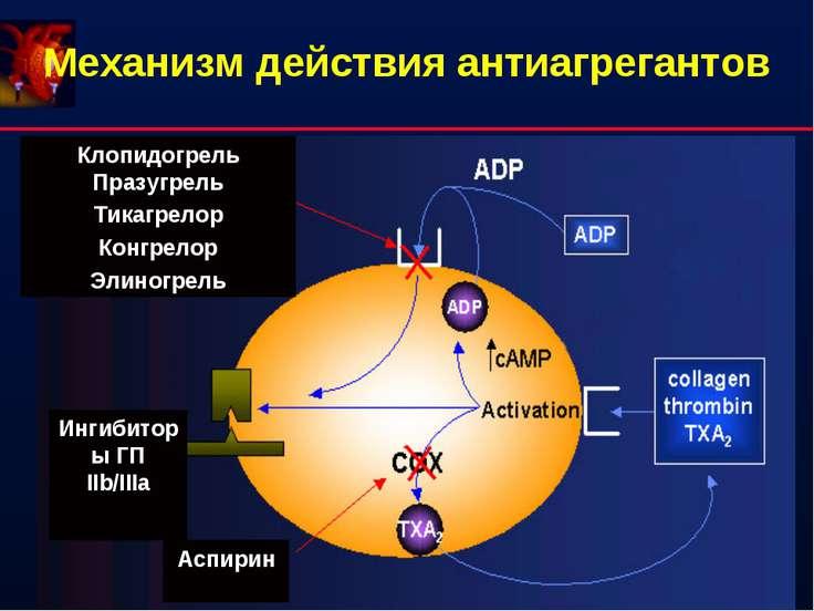 Механизм действия антиагрегантов
