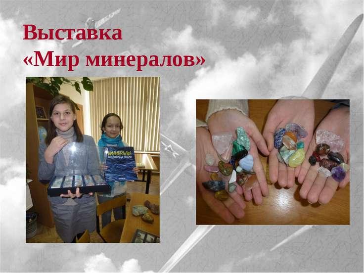 Выставка «Мишки Тедди» Выставка «Мир минералов»