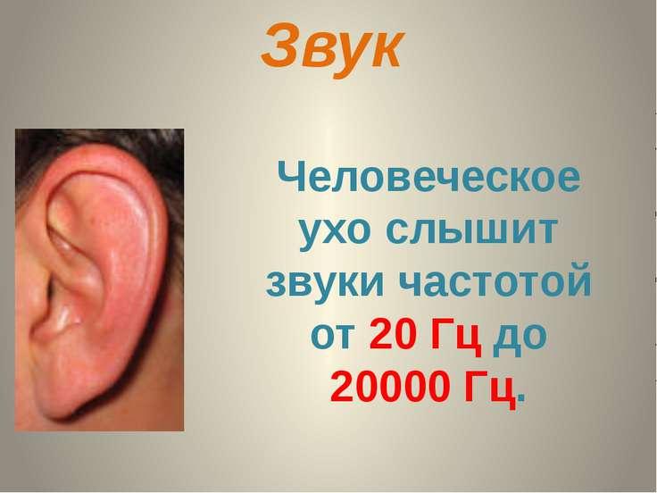 Характеристики звука Высота - зависит от частоты, чем больше частота, тем выш...
