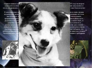 Первым живым существом, покинувшим планету, была собака Лайка, запущенная в 1...