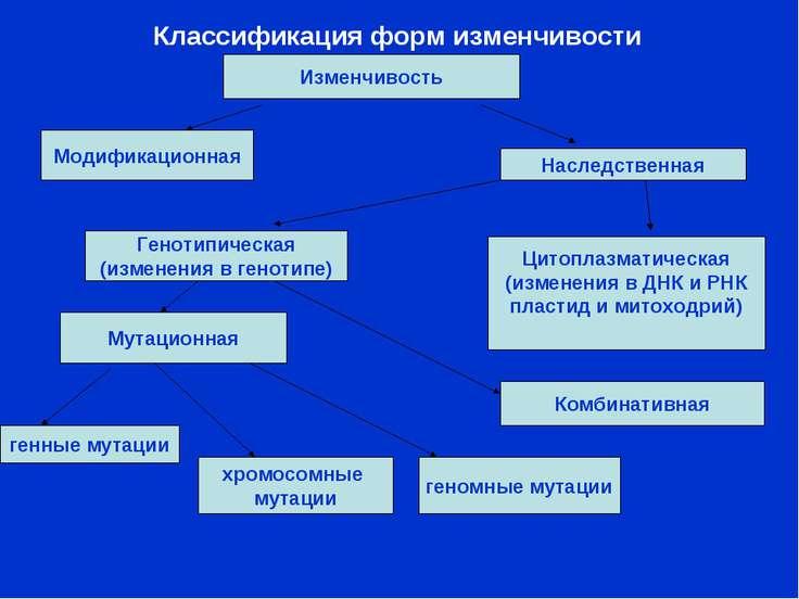 Классификация форм изменчивости Изменчивость Модификационная Наследственная Г...