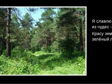 Я славлю чудо из чудес – Красу земли, зелёный лес! В.Лукша.