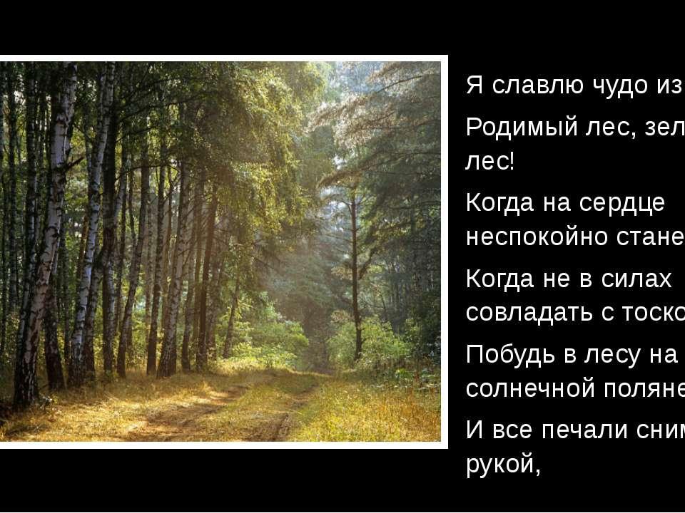 Я славлю чудо из чудес – Родимый лес, зелёный лес! Когда на сердце неспокойно...